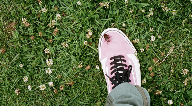 Stüssy x Vans New Collab Has Your Summer Footwear Covered