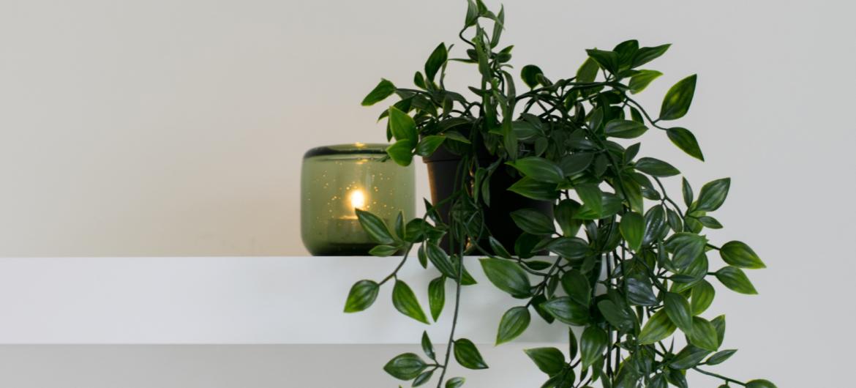 Candle on a white shelf